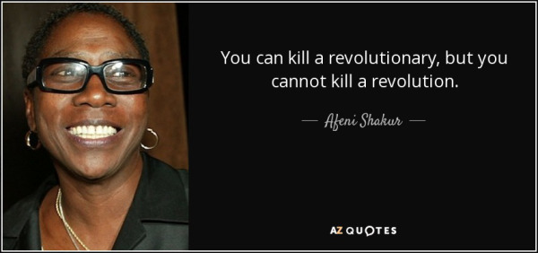 quote-you-can-kill-a-revolutionary-but-you-cannot-kill-a-revolution-afeni-shakur-93-31-36